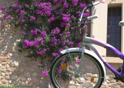 biciclette-Corte-Zuara